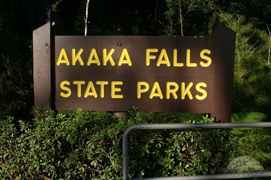 Body of Man Missing in Akaka Falls Park Found