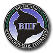 BIIF Boys Volleyball Playoffs Begin Tuesday