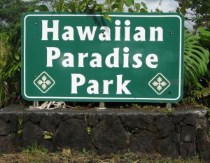 Most of the roadways in the sprawling Puna subdivision now have official speed limits. File photo.