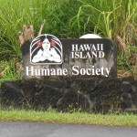 Hawaii Island Humane Society Reorganizes, Hires CEO