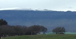Snow on Mauna Kea as seen this morning from Waimea. Photo courtesy of Camille Kalahiki.
