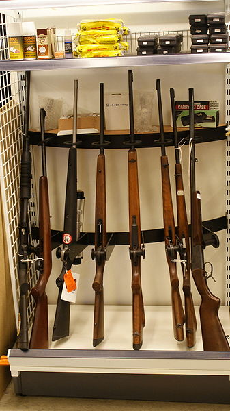 UPDATE: Firearm Background Check Bill Approved, Sent to Governor