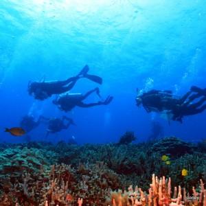 University of Hawaii marine science students. Image courtesy.