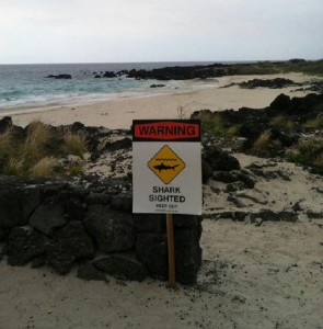 The sign posted at Mahaiula Beach today following the shark attack. DLNR photo.