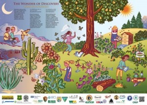 This poster from the US Fish and Wildlife Service notes that pollinators come in many forms.