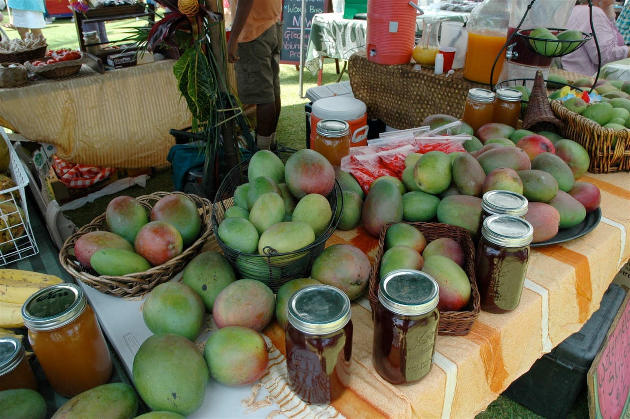 A sampling of the mango mania from a previous Annual Mango Festival. Photo courtesy of Fern Gavelek.