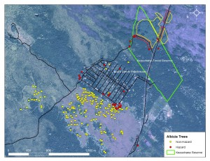 This map shows trees targeted in the demonstration area (click to enlarge). Image courtesy of BIISC.