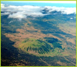 The Pu'u Wa'awa'a cone and forest reserve beyond. USFS photo.