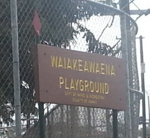 waiakeawaena playground sign