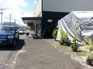 Two of last night's stabbing victims were attacked on this sidewalk in front of the Hilo Town Tavern's beer garden. Photo by Dave Smith.