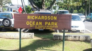 Richardson Ocean Park in Hilo has been the scene of three rounds of treatment for little fire ants so far this year. File photo.