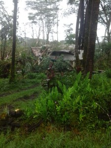 Property damage is being reported in various sections of Puna after Hurricane Iselle passed overnight. Photo by Darien Corrales.