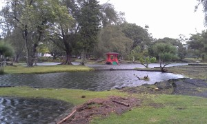Waters rise at Queen Liliuokalani Park in Hilo as Hurricane Iselle barrels toward the Big Island. Photo by Illene Alford.