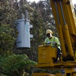 Pine Tree Causes Power Interruption for North Kohala