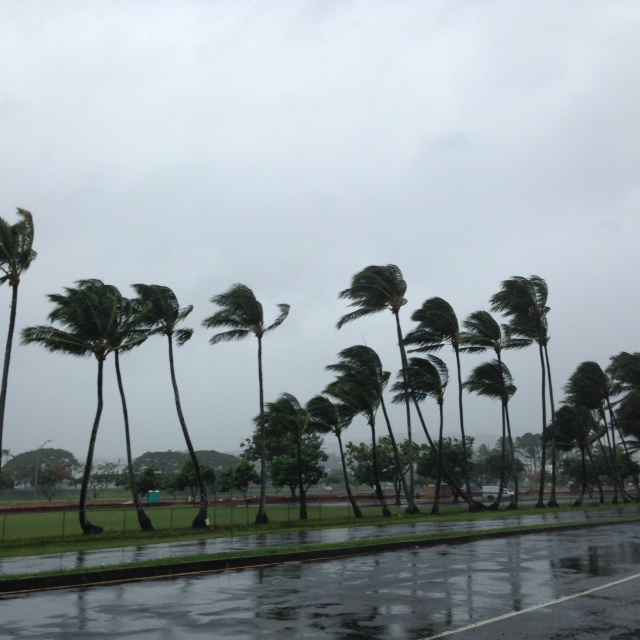 High winds and heavy rain begin to whip Downtown Hilo. Photo by Wainani.