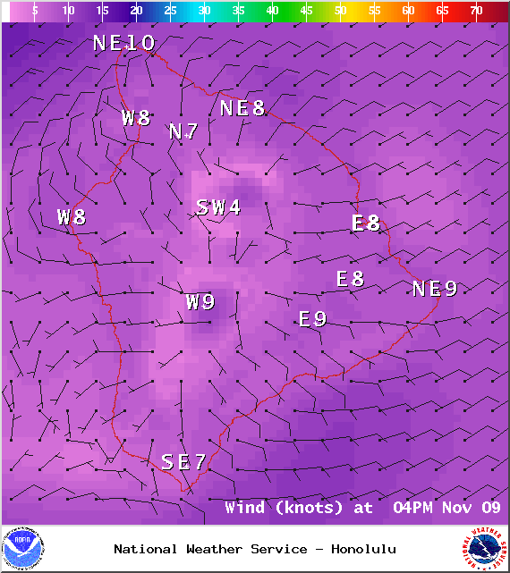 Expected wind conditions at 4pm - Image: NOAA / NWS