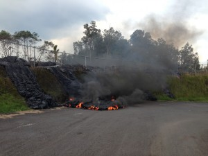 Just before noon on Tuesday, Nov. 11 lava pushed through the fence at the southwest corner of the Pāhoa transfer station and moved down the slope onto the station grounds. HVO photo.