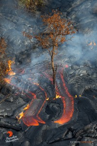Overflight view of the June 27 lava flow on Dec. 19. Photo credit: Extreme Exposure/ Paradise Helicopters.