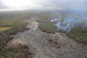 This photo taken Dec. 22, shows a west southwest view of breakouts from the lava tube near the True/Mid-Pacific geothermal well site that are active and slowing moving towards a forest to the north. HVO photo.