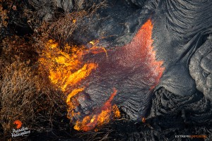 In this photo taken on Jan. 23, Pahoa overflight: A toe of lava breaks out and burns scrub brush in an area above Hwy 130.  Photo credit: Extreme Exposure Media/Paradise Helicopters