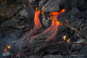 In this photo taken on Jan. 14 an increase in back pressure, causes a tube's crust breaks and releases molten lava, slowly expanding the flow field above the Pahoa Marketplace. Photo: Extreme Media Exposure/Paradise Helicopters.