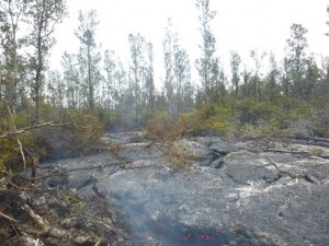 Hawai'i County Civil Defense lava flow image taken from the ground on Jan. 16. Civil Defense photo.