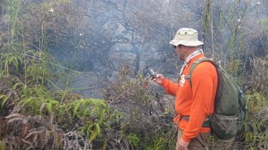 This photo taken on Jan. 26 shows a HVO geologist taking a GPS waypoint of the leading edge of the June 27th flow, which consisted of a narrow, sluggish breakout during the afternoon. HVO photo.