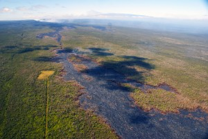 This photograph taken on Jan. 29 looks upslope along the ground crack system of Kīlauea's East Rift Zone. A small breakout from the lava tube is burning forest just left of the center of the photograph. In the upper left, thick fume is emitted from Puʻu ʻŌʻō. Near the top of the photograph, the snow-covered peak of Mauna Loa can be seen. HVO photo.