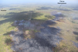 The view in this photo taken on Jan. 6 is looking to the north-east, the distal part of the flow, with the flow lobe behind Pahoa Marketplace to the right and the newer north-northeast advancing lobe to the left. HVO photo.
