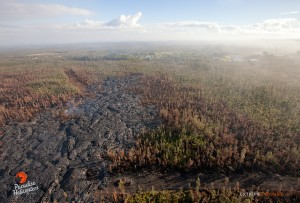 This photo taken on Jan. 23 shows lava continuing to advance toward Highway 130. Photo credit: Extreme Exposure Media/Paradise Helicopters.