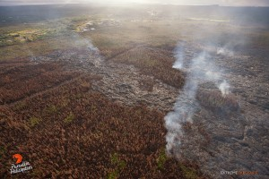 In this overview photo taken on Jan. 28, you can see the distal tip of the June 27 lava flow. Photo credit: Extreme Exposure/Paradise Helicopters.