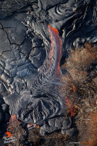 This photo taken on Feb. 4 shows a large finger of lava breaks out along the edge of the flow, pushing into the adjacent brush. Photo credit: Extreme Media Exposure/Paradise Helicopters.
