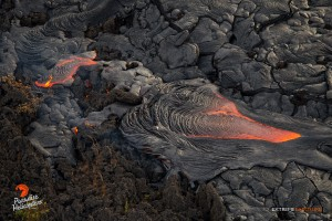This photo, taken on Feb. 6, shows ropey pahoehoe creeps over an old 'a'a flow. Photo credit: Extreme Exposure/Paradise Helicopters.