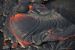 This photo, taken on Feb. 6, shows a finger of pahoehoe creates silvery ropey braids as it spreads and cools. Photo credit: Extreme Exposure/Paradise Helicopters.