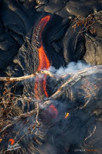 This photo, taken Feb. 16, shows intense heat rising from a little river of lava ignites a fallen tree above it. Photo credit: Extreme Exposure Media/Paradise Helicopters.