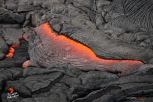 In this photo, taken Feb. 24 at 8 a.m., a tongue of lava oozes from beneath the hardened crust of the flow. Photo credit: Extreme Exposure Media/Paradise Helicopters.