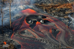In this photo, taken Feb. 23, multiple streams of lava pour out of a breakout from the tube system about a half mile downslope of the old geothermal pad. Photo credit: Extreme Exposure Media/Paradise Helicopters.