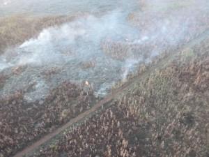 Hawai'i County Civil Defense image, taken Feb. 23, of a surface breakout along the north margin near dirt road/fire break. Civil Defense photo.