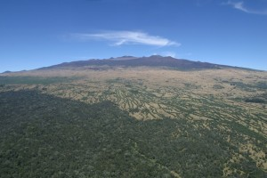 Aerial view of the Hakalau Forest National Wildlife Refuge. Credit: U.S. Fish and Wildlife Service Staff.