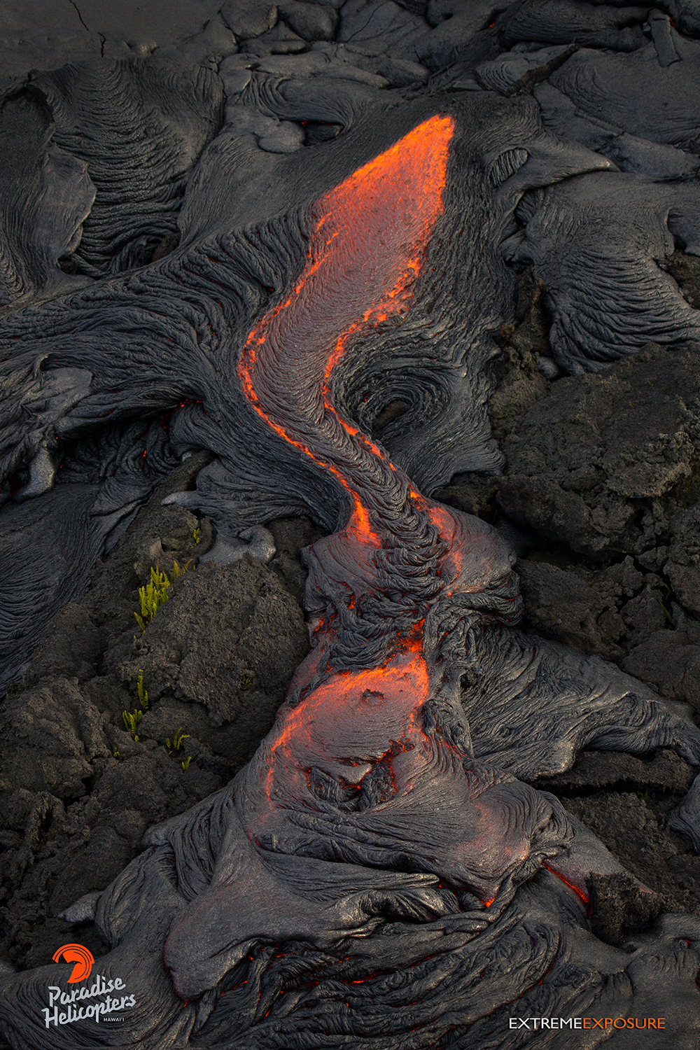 paradise helicopters kona with June 27 Lava Flow Update 31715 on Four Seasons Resort Maui Unforgettable Experiences besides Kona Volcano By Air Land together with Fletch Photography also Oahu Helicopter Tours Hawaii besides June 27 Lava Flow Update 31715.