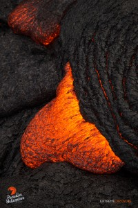 In this photo, taken March 27, a toe of lava oozes out from beneath the hardened crust. Photo credit: Extreme Exposure Media/Paradise Helicopters.