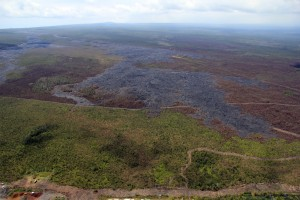 This photo, taken March 17, shows the downslope portion of the June 27 lava flow. As reported since March 12, the leading edge just upslope of the Pahoa Marketplace, is inactive. The active breakouts noted Tuesday were more than 14 km (8.7 mi) straight-line distance from the Marketplace. USGS HVO photo.