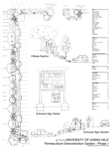 Permaculture design plans for the parking lot. Courtesy photo.