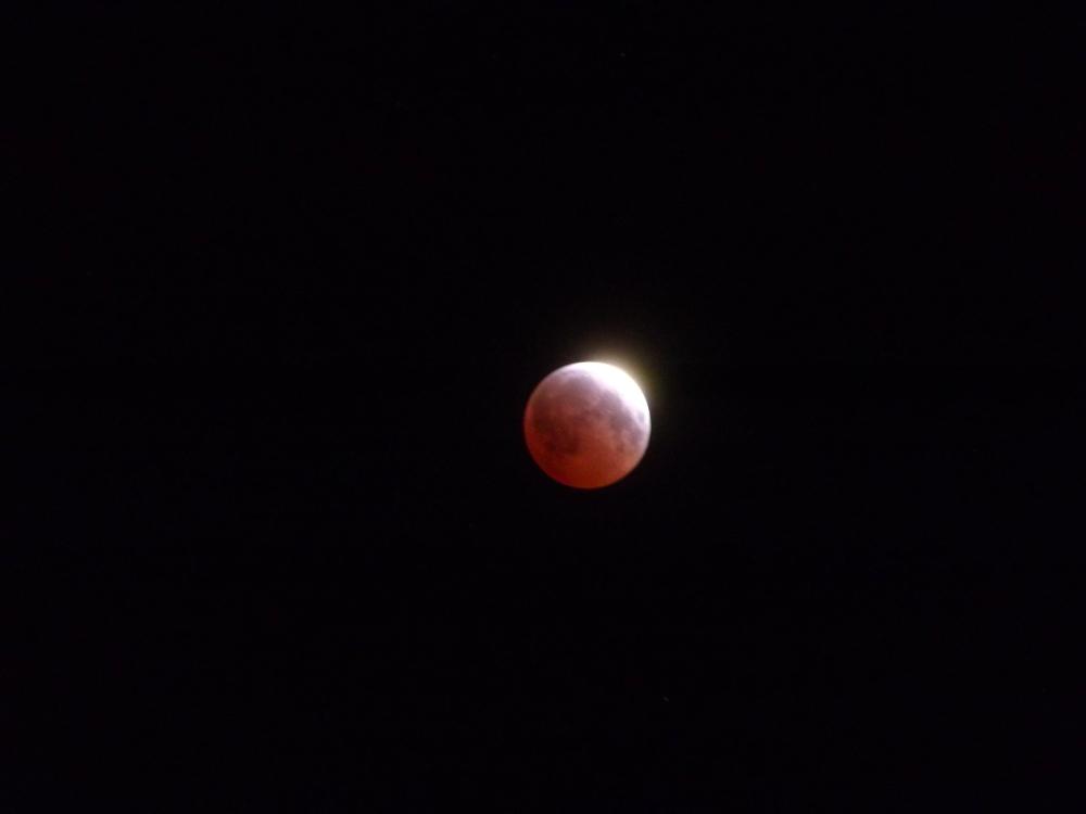April 4, 2015 total lunar eclipse / Image: Asa Ellison