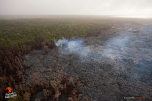 April 16, 2015. Activity continues in this area about a mile north of Pu'u 'O'o, as lava continues to encroach upon the northern tree line. There were numerous breakouts in the middle of the flow field as well. Photo credit: Extreme Exposure Media/Paradise Helicopters.