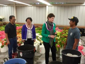 Senator Hirono and USDA Deputy Secretary Harden get an update on Hawai'i's floriculture industry from Eric & Jon Tanouye at Green Point Nurseries in Hilo