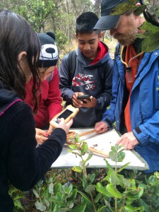 Kids examine insects with an entomologist in Hawai'i Volcanoes National Park. NPS Photo.