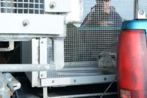 U.S. Coast Guard photo by Petty Officer 2nd Class Tara Molle
