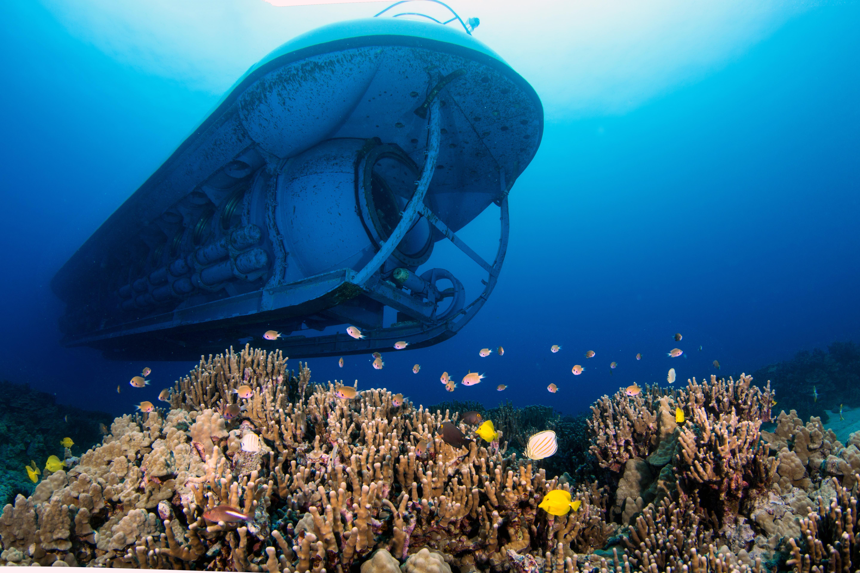 Atlantis Submarine Big Island