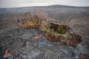 Pu'u Kahauale'a continues to be surrounded by lava flows. Photo credit: Extreme Exposure Media/Paradise Helicopters.